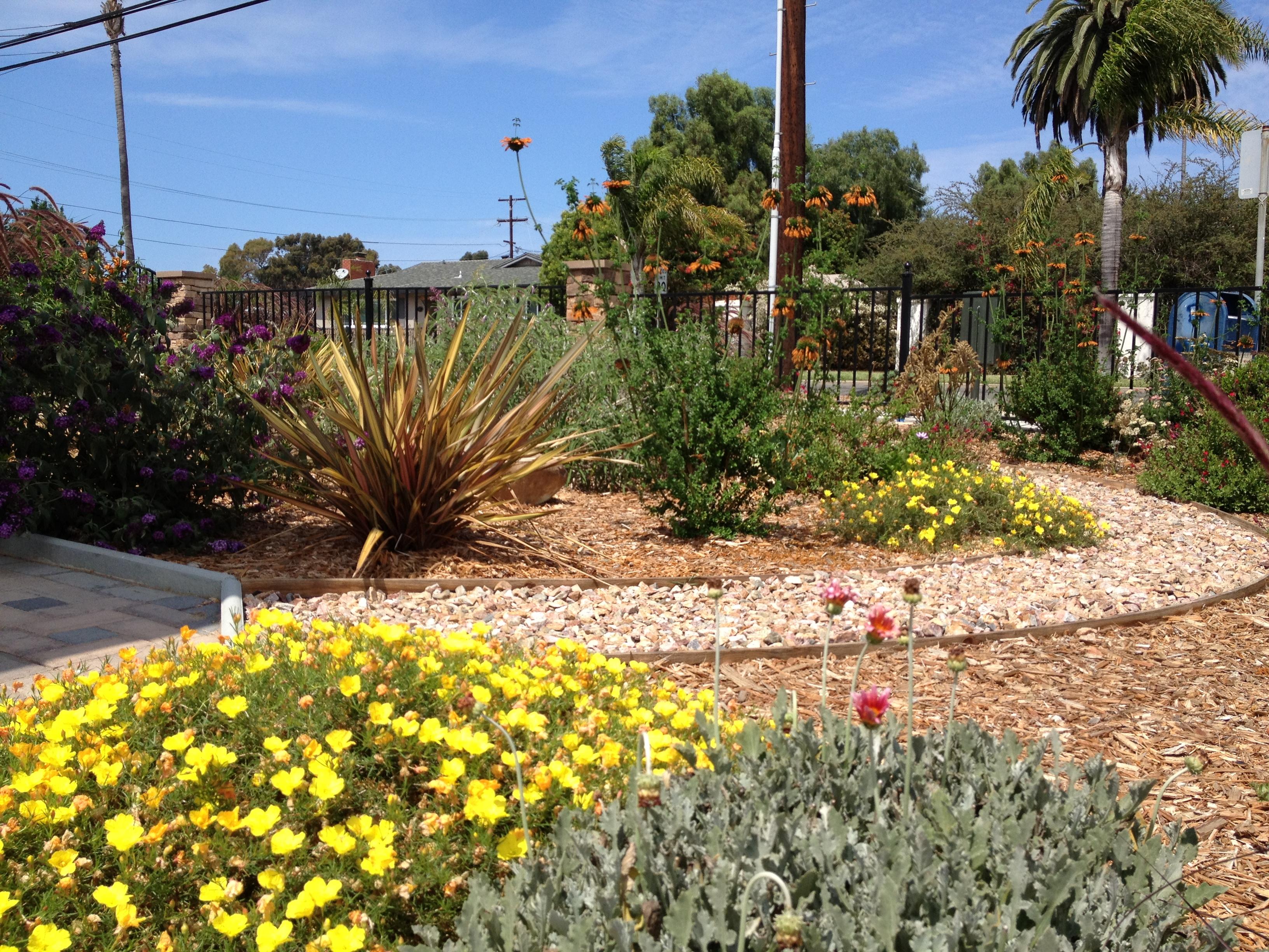 Residential Landscape Designer San Diego