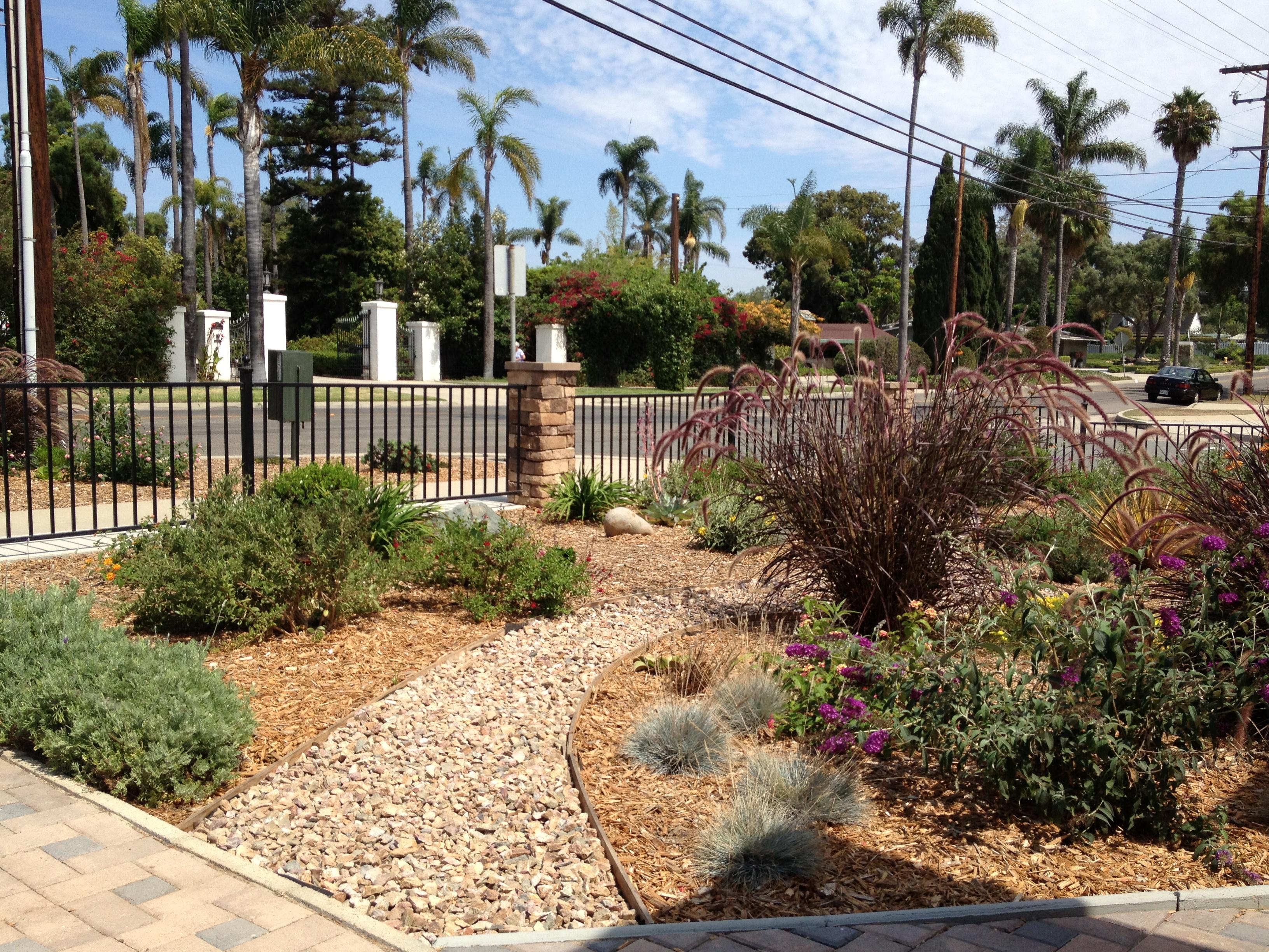 Professional Landscape Design San Diego