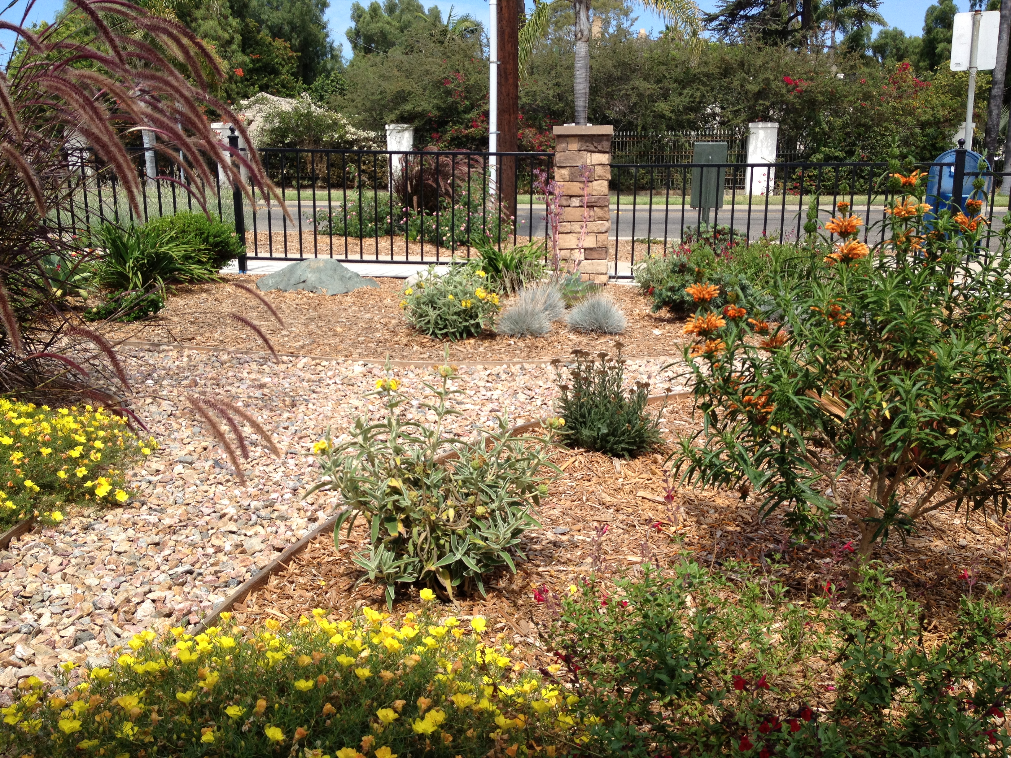 Landscape Professional in San Diego