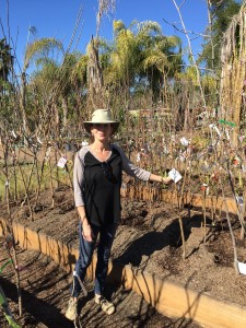 Tracey Grillo is a Certified Landscape Designer @ Botaniscapes in Alpine, CA.